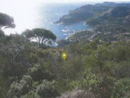 Building Plot with sea view for 6 Houses in Begur, Costa Brava,