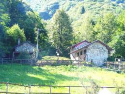 Picture Rustici Pira, Lombardy