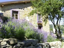 Casa Lavendel R,