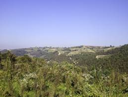 Picture Terreno Collina, Piedmont