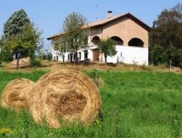 Picture Cascina Selena A, Piedmont