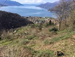 Picture Terreno Maccagno, Lombardy