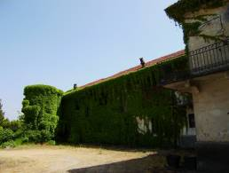 Picture Villa Nicola M, Piedmont