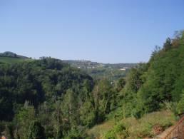 Picture Rustico Capriolo G, Piedmont