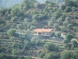 Picture Villa Dolceacqua, Liguria