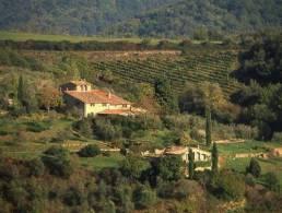 Picture Villa Chianti, Tuscany